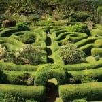 This is the maze at the Na Aina Kai botanical gardens