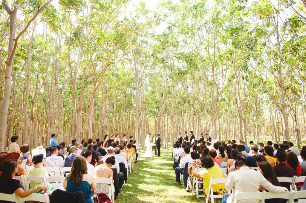 The Plantation venue can accommodate a large number of guests