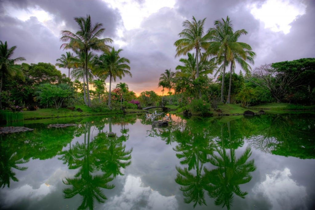 The Lagoon At Dawn.
