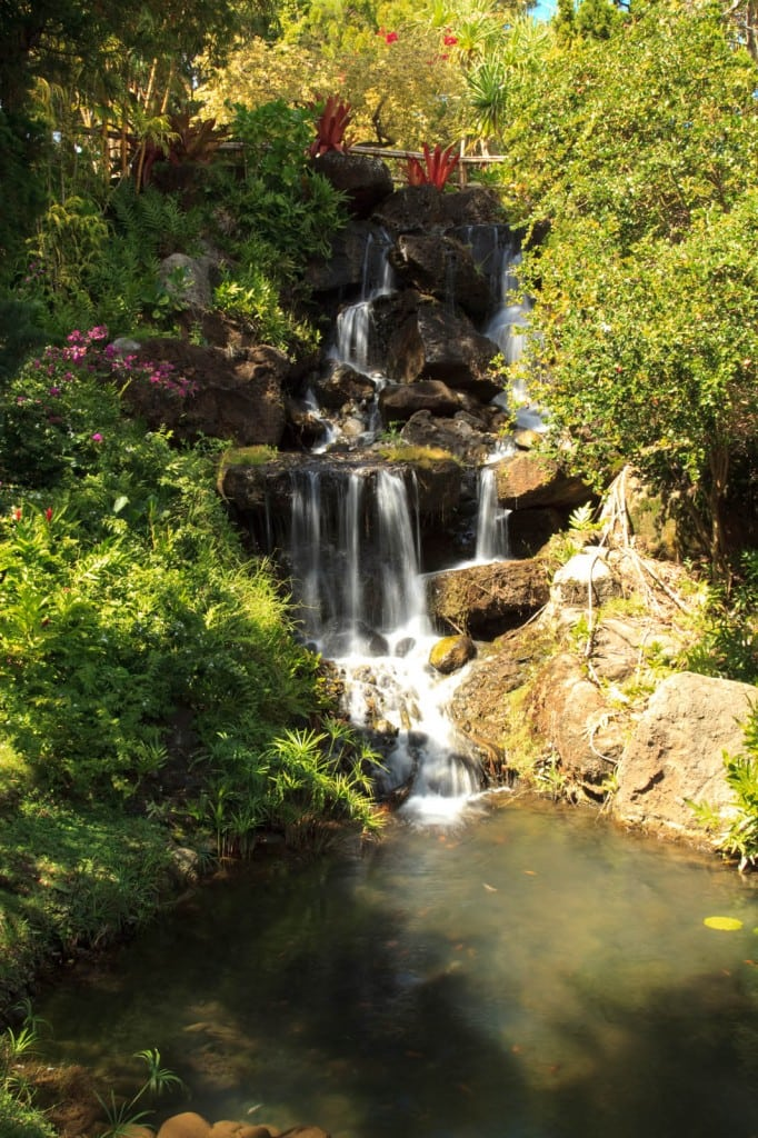 Waterfall by the Tea House